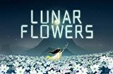 游戏日推荐 唯美梦幻 带你踏上奇妙旅途《花语月》