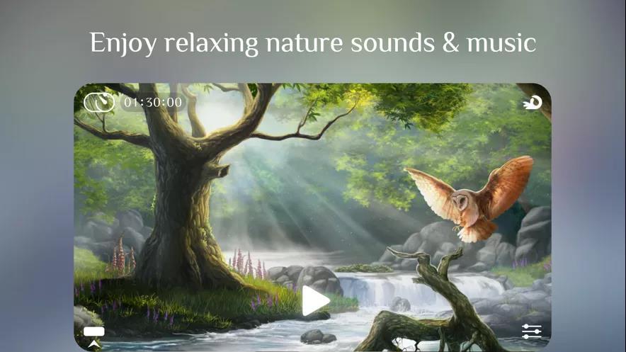 大自然流水之声1.jpg