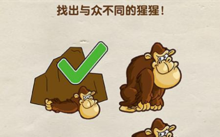 超级烧脑第10关攻略  找出与众不同的猩猩
