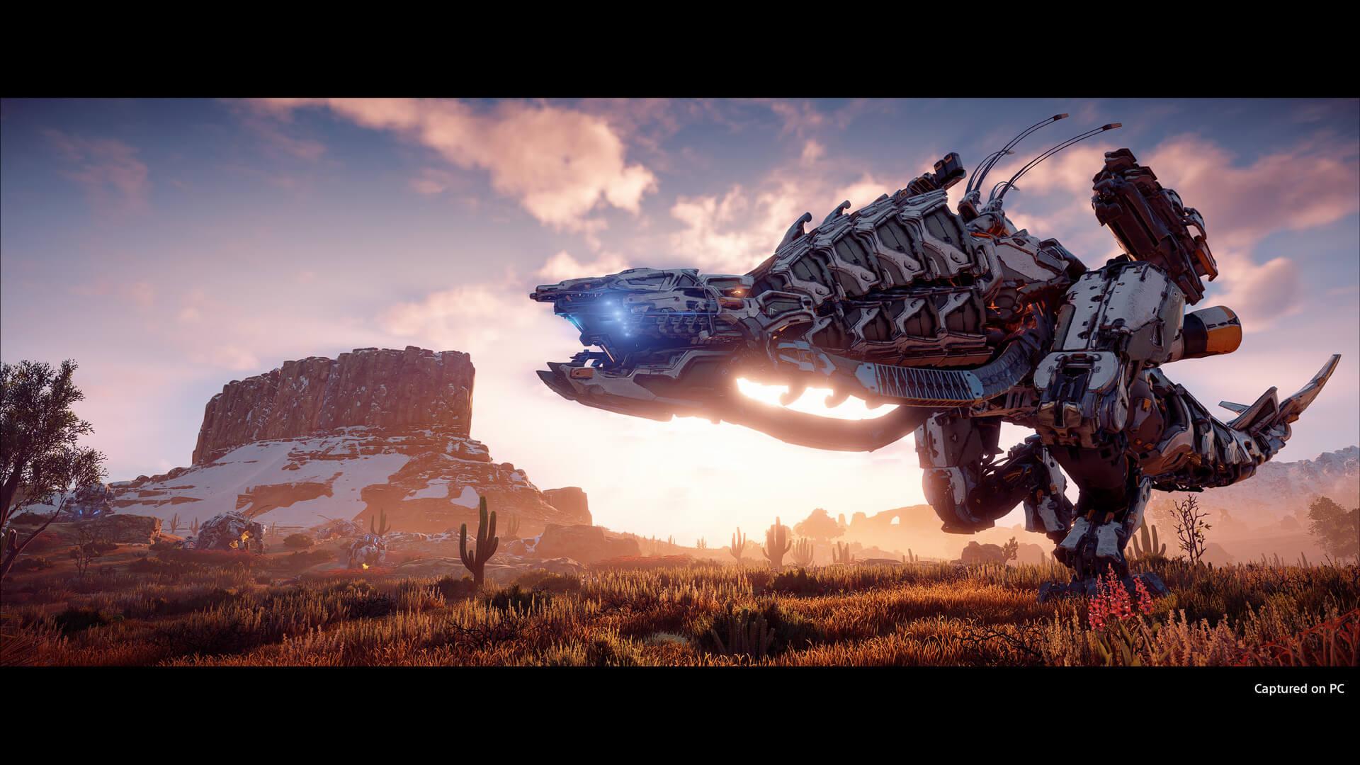 《地平线:零之曙光》PC版预下载开启