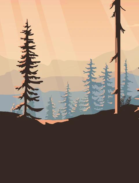 Wild Journey-1.jpg