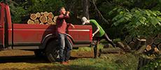 阻止盗猎盗采事件发生《Forester Simulator》上架Steam