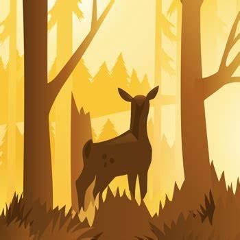 Wildfulness 2 icon.jpg